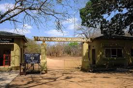 """Parque Nacional da Gorongosa na Coligação Global """" United Biodiversity"""