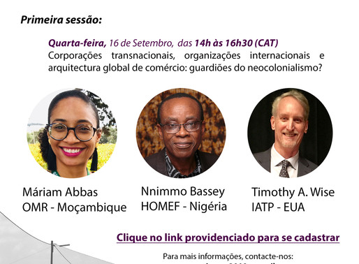 4o Workshop de Maputo Impunidade Corporativa e Direitos Humanos