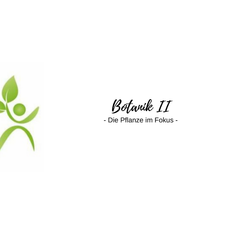 Botanik II