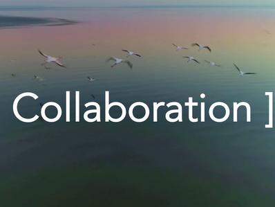 À distance et en équipe, peut-on rester collaboratifs et créatifs?