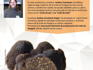 Conferencia Andrea Csorbainé