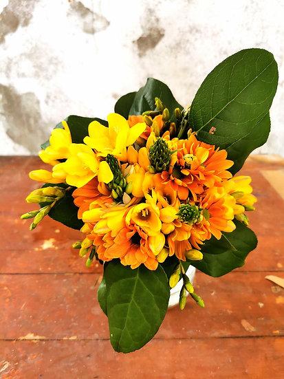 Bouquet de Frésias, Crisântemos e Ornithogalos