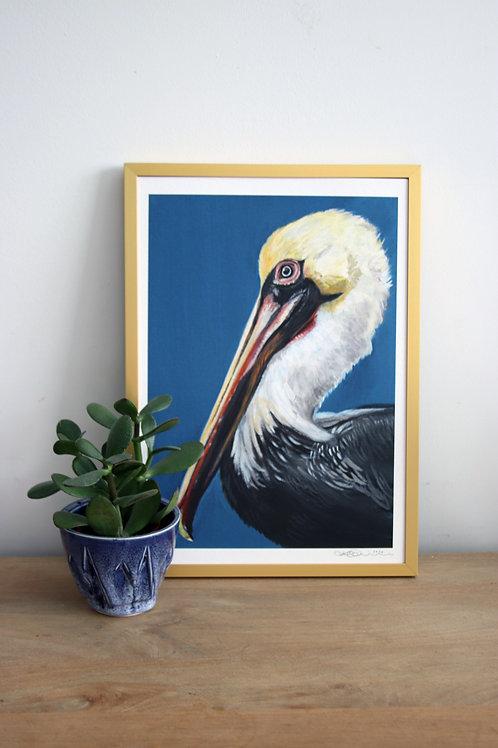 Pelican Fine Art Print