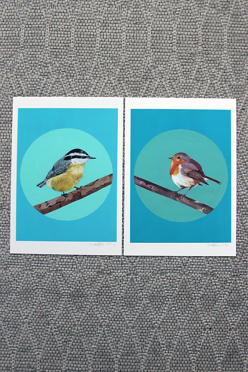 2 x Song Bird Fine Art Prints