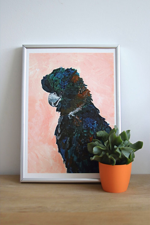 Cockatoo Fine Art Print