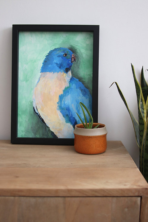 Bluebird A4 original on paper