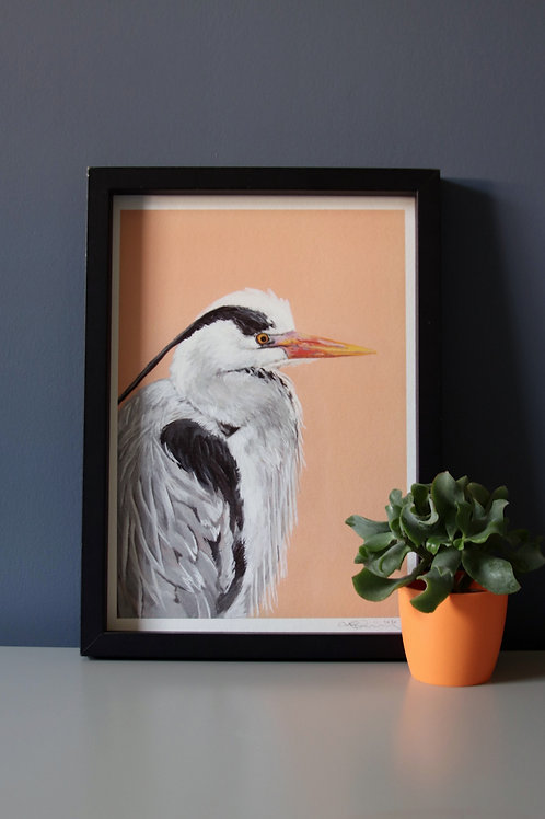 Grey Heron Fine Art Print