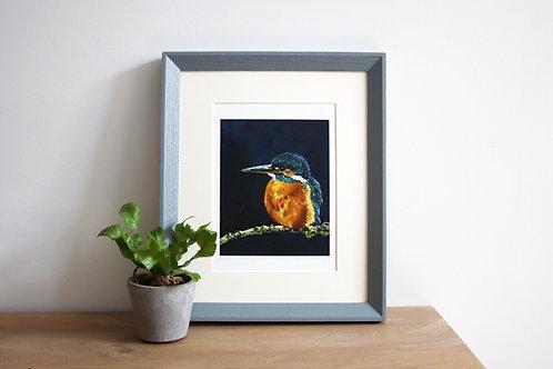 Kingfisher Fine Art Print