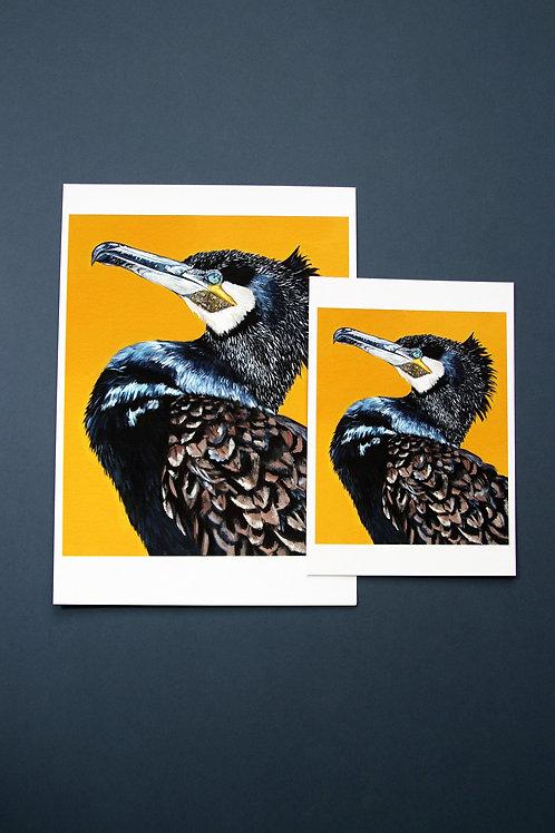 Mustard Cormorant Fine Art Print