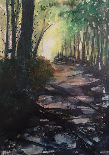 A Cotswold lane