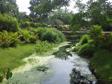 Holiday in Vanuatu   Part 2 Mele cascades