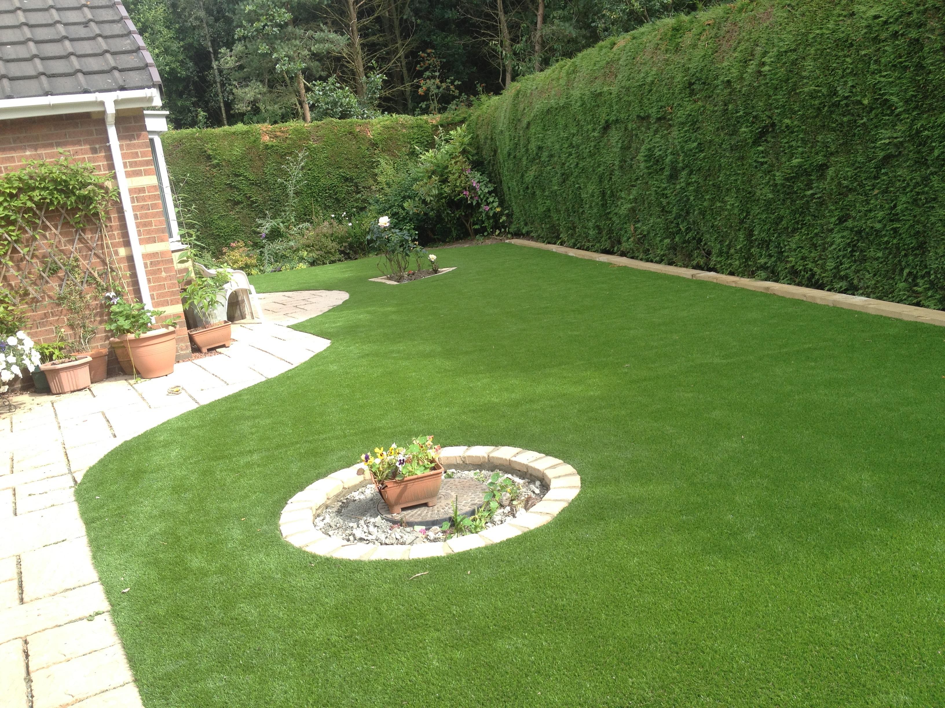 Artificial Garden 2
