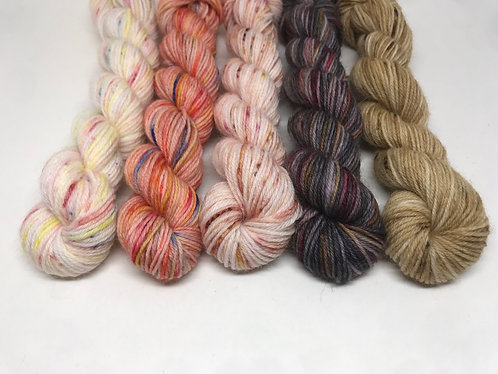 4 ply mini skeins - Confetti, Aries, Ginny, Unrepeatable, To a mouse
