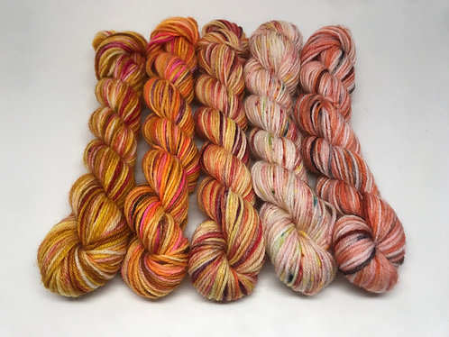 4 ply mini skeins - fawkes, shock the bullies, leo, summer haze, woodcarver