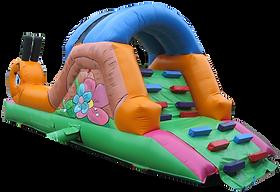 Garden Snail Slide and Ballpool