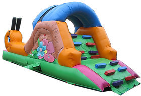 Garden Snail Slide and Ballpool
