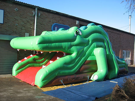 Crocodile Up and Over Slide