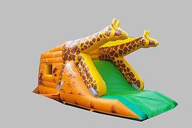 Giraffe Garden Slide