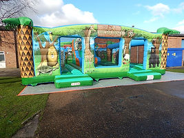 Animals Large Activity Bouncer with Central Slide