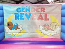 Gender Reveal Backwall in Pink and Blue