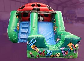 Ladybird Slide