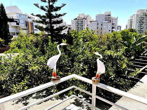 זוג ציפורי נוי לעיצוב המרפסת -  01