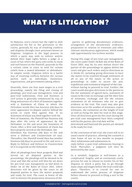 Joel & Co Newsletter (Litigation).png