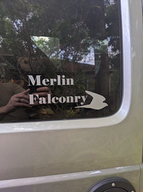 Merlin Falconry Decal