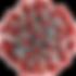225px-2019-nCoV-CDC-23312.png