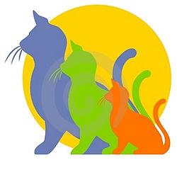 kitten-to-cat-growth-clipart-thumb2887126.jpg