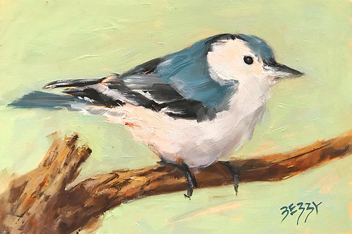 Nuthatch on a Branch 5 x 7""