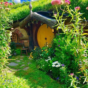 Experience the magic of Hobbiton