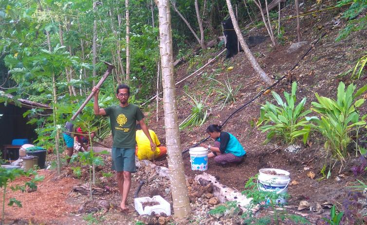 Greening resorts project