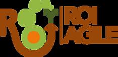 roi_logoweb_color_1.png