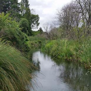 Sacred Retreat - Tokaanu Stream