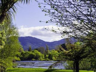 Tongariro Lodge surrounds.jpg