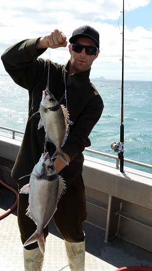 Man holding tarakihi fish