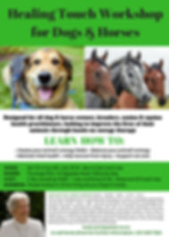 Healing Touch Workshop for Dogs & Horses