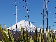 Mount Ngarahoe NZ