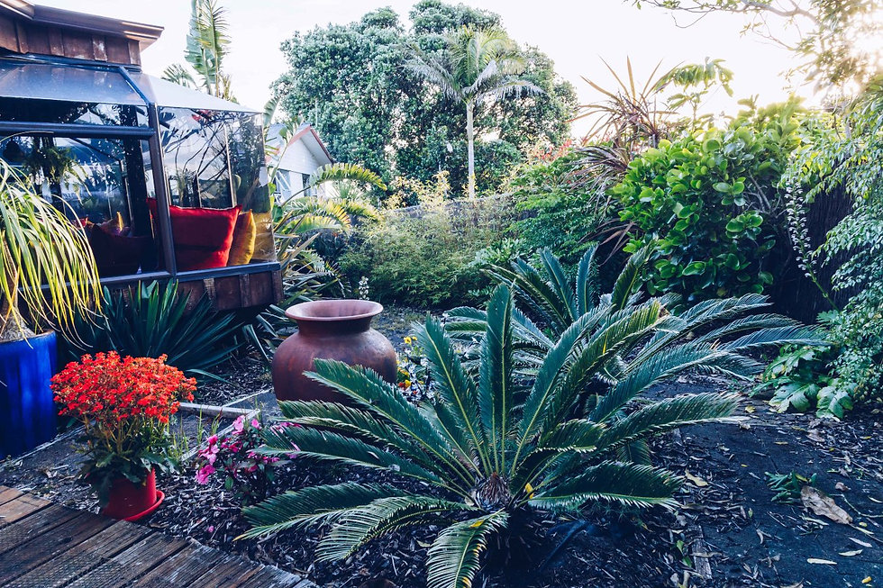 Beautiful native garden with large pottery urn