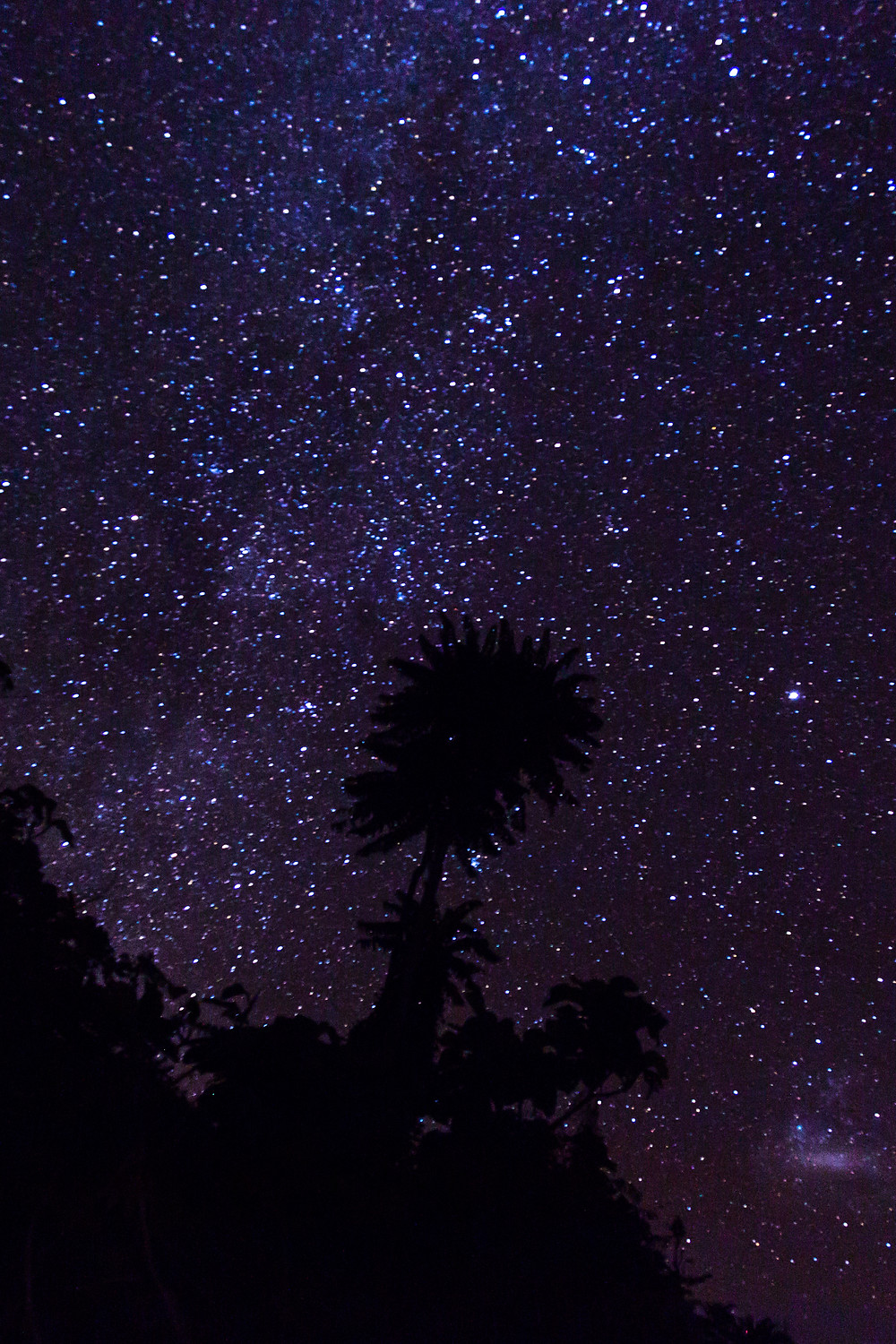 Sulawesi: Castaways - too many stars.