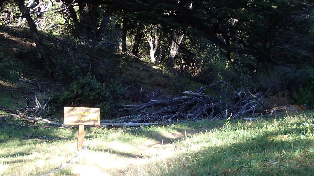 Greater Patagonian Trail: Useless Huella Andina signage.
