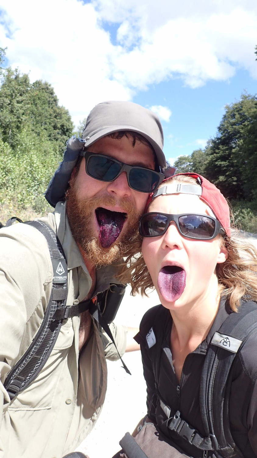 Greater Patagonian Trail: Maqui mouths.