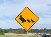 Sign Bairnsdale Morass