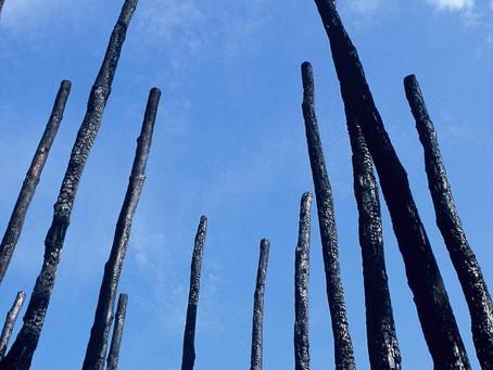Kate Cullity 'Firestick' Design
