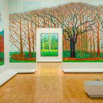 Hockney's Kinship with Nature