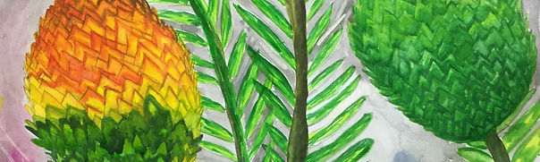 wollemi-pine-meera-10-h-1920x576-1.jpg