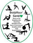 BodyMouvSanté, SwissBall, Yoga, Stretching, Barre au sol, Barre à terre, Shiatsu