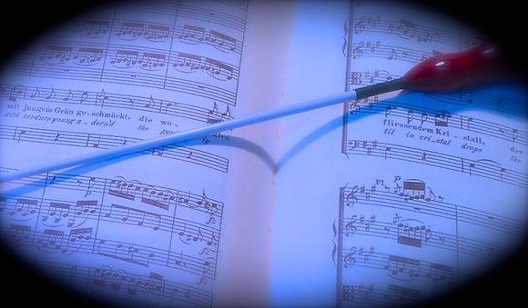 Capriccio Tempestoso for Harp & Orchestra (Full Score)