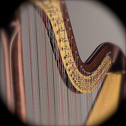 CAPRICCIO TEMPESTOSO (Harp Solo Part)